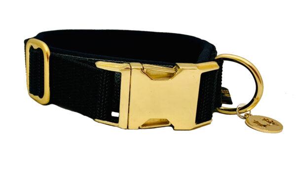 Hundehalsband 5